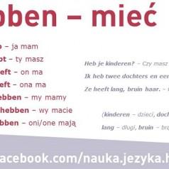 Odmiana i użycie czasownika w jezyku niderlandzkim hebben – mieć