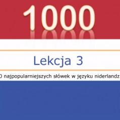 Popularne przymiotniki oraz nazwy zawodów w języku niderlandzkim – lekcja 3 [wideo]