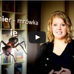 Lekcja 1 – nauka holenderskiego z popolsku.tv [wideo]