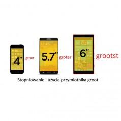 Stopniowanie przymiotnika groot – duży, duża, duże w języku niderlandzkim