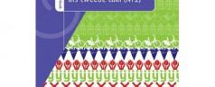 Słownik języka niderlandzkiego Van Dale Pocketwoordenboek / Nederlands als tweede taal (NT2)