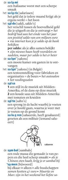 van Dale Pocketwoordenboek Nederlands als tweede taal (NT2)przykład ok