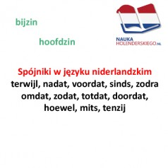 Spójniki w języku niderlandzkim – terwijl, nadat, voordat, sinds, zodra, omdat, zodat, totdat, doordat, hoewel, mits, tenzij