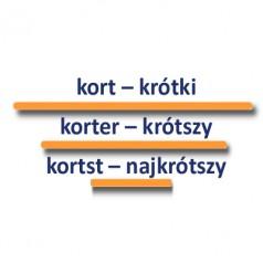 Stopniowanie i użycie przymiotnika kort – krótki, krótka, krótkie w języku niderlandzkim