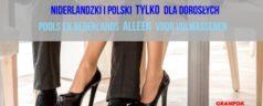 Niderlandzki i polski tylko dla dorosłych /książka + darmowy dostęp do nagrań mp3/ autorstwa Agata van Ekeren Krawczyk