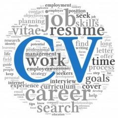 Jak napisać CV po holendersku/niderlandzku – curriculum vitae