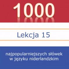 Dom-y (het huis, de huizen) – lekcja 15  1000 najpopularniejszych słówek w języku niderlandzkim [wideo + słowniczek]