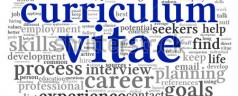 Przykładowe CV w języku niderlandzkim (voorbeeld cv in het Nederlands) [+wideo]