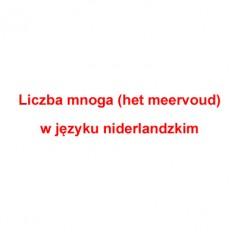 Liczba mnoga rzeczowników (het meervoud) w języku niderlandzkim