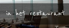 Rozmówki i słownictwo niderlandzkie w restauracji [wideo]