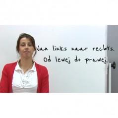 Lekcja 5 – język niderlandzki dla początkujących [wideo]