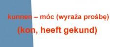 Odmiana i użycie czasownika kunnen – móc (wyraża prośbę) (kon, heeft gekund)