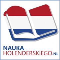 Inne wartościowe materiały do nauki jezyka niderlandzkiego/holenderskiego które można ściągnąć gratis z Internetu
