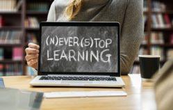 10 powodów dla których warto uczyć się języka niderlandzkiego