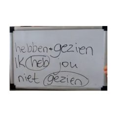 Czas przeszły dokonany w języku niderlandzkim[wideo]