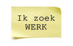 Znajdź pracę ze znajomością języka niderlandzkiego w Holandii, Polsce, Belgii