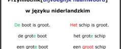Przymiotnik[bijvoeglijk naamwoord] w języku niderlandzkim [wideo]