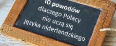10 powodów dlaczego Polacy nie uczą się języka niderlandzkiego mieszkając w Holandii Belgii