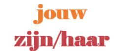 Zaimek dzierżawczy w języku niderlandzkim- Het bezittelijk voornaamwoord in het Nederlands [wideo]