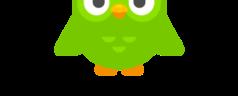 Duolingo nauka języka niderlandzkiego w telefonie