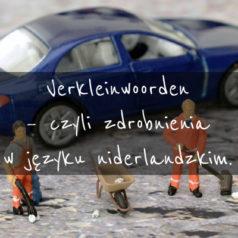 Verkleinwoorden – czyli zdrobnienia w języku niderlandzkim. [wideo]