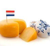 Wsparcie księgowości z językiem holenderskim
