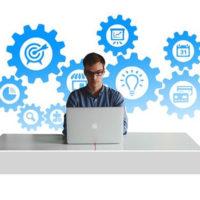 Handlowiec e-commerce język holenderski[niderlandzki]